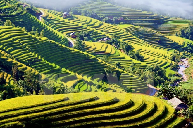 Vietnam – best place for solo travel