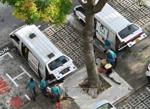 新加坡:寨卡病毒感染病例增至82例