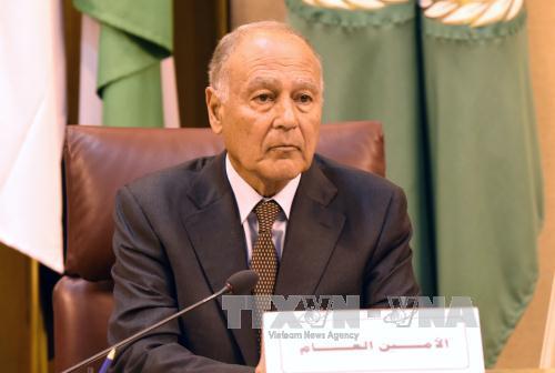 阿盟秘书长盖特呼吁为叙利亚冲突寻找解决方案