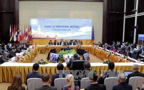 Effectiveness of ASEAN+1 cooperative mechanism