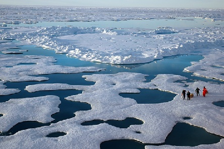 Humans: the main cause of Arctic sea ice melting