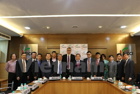 India wishes to support Vietnam's IT development