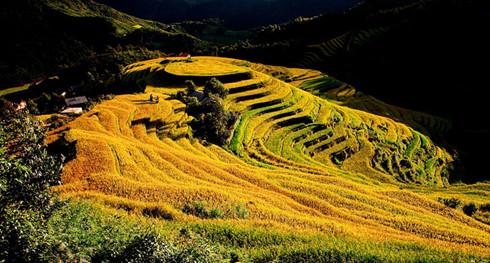 provinsi yen bai - destinasi yang atraktif di perjalanan  daerah tay bac hinh 0