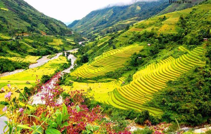 muong lo - ayunan kebudayaan dari warga etnis minoritas thai den hinh 0