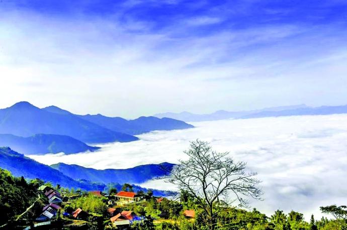 daerah dataran tinggi sin ho: keindahan yang masih liar di daerah pegunungan dan hutan tay bac hinh 0
