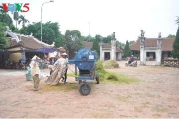 古きの村「トゥオンラム」  hinh 1