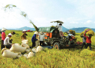 Investment restructuring required to develop agriculture Economy