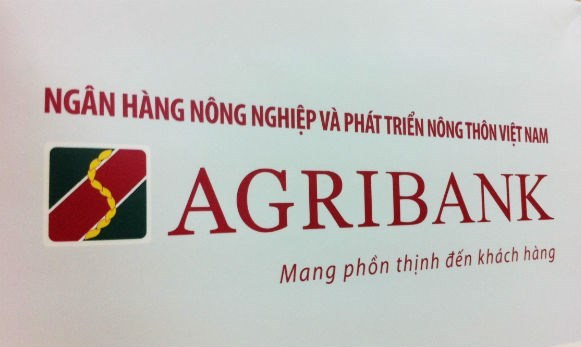 Tay Ninh farmers make a fortune thanks to loans based on the production link group model
