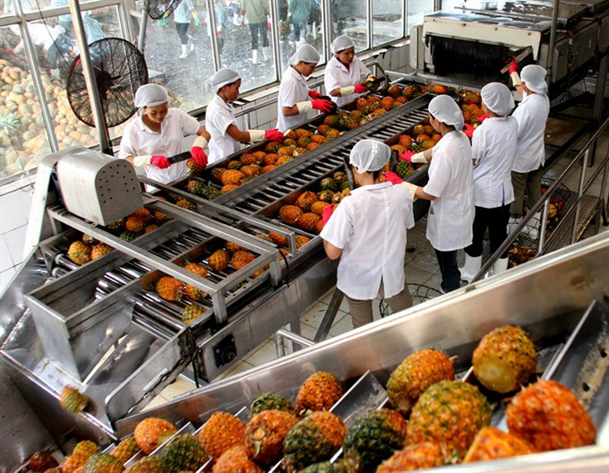 production by value chains increases vietnam's vegetable and fruit exports hinh 0