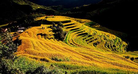 ヘトナム北西部の魅力的目的地イェンハイ省 hinh 0