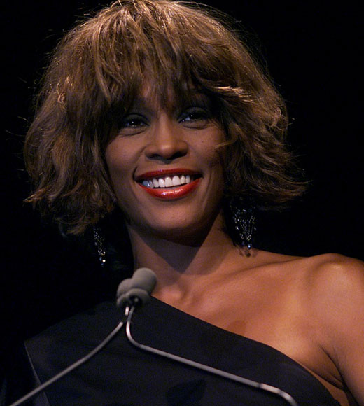 whitney houston tribute hinh 9