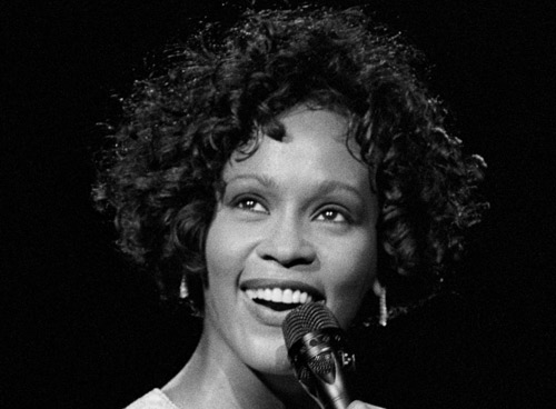 whitney houston tribute hinh 10