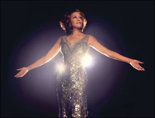 whitney houston tribute hinh 11
