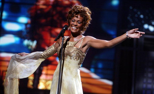 whitney houston tribute hinh 6