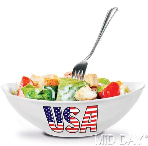 us culure: melting pot or salad bowl hinh 0