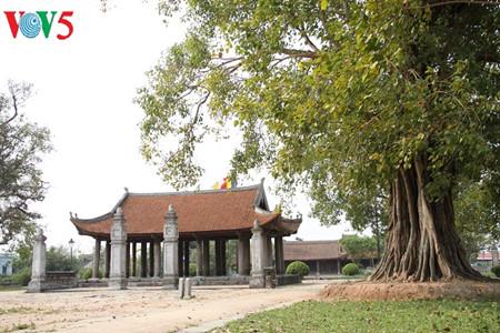pagoda keo thai binh – pagoda yang punya arsitektur paling unik di vietnam utara  hinh 1