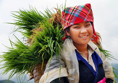 vietnam aprovecha recursos culturales para desarrollo sostenible  hinh 2