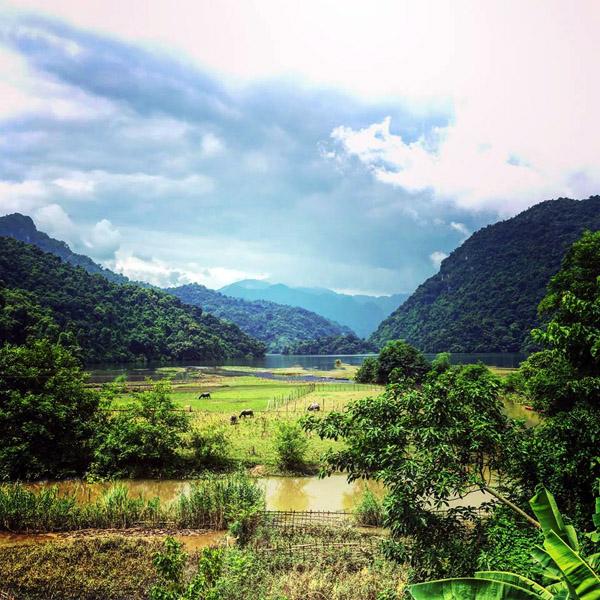 ambiente pacifico en lago ba be hinh 4