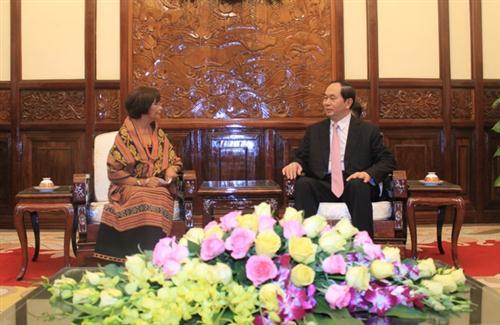 presidente de vietnam recibe a nuevos embajadores extranjeros  hinh 0
