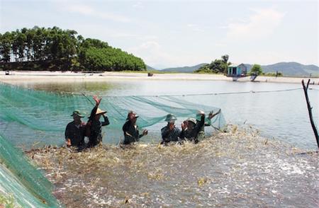 sector acuicola vietnamita por elevar valor de exportaciones de camaron hinh 0