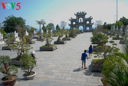 peninsula de son tra, el jade de danang hinh 6