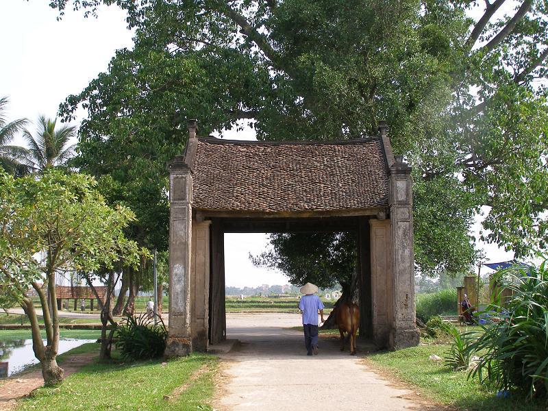 desa dan faktor-faktor yang menciptakan wajah desa vietnam hinh 0
