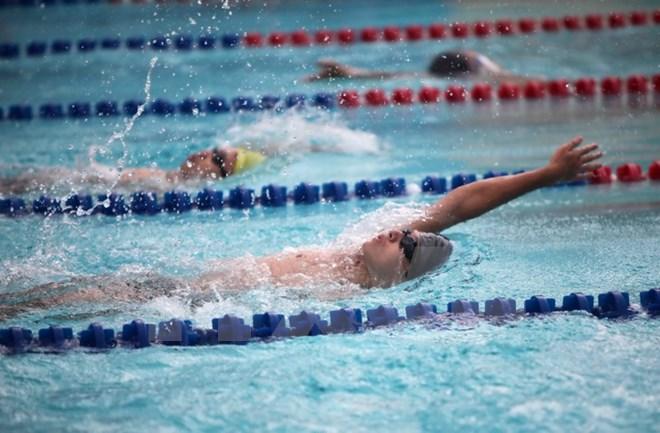 сборная вьетнама завоевала 39 золотых медалеи на соренованиях по плаванию среди спортсменов юва hinh 0