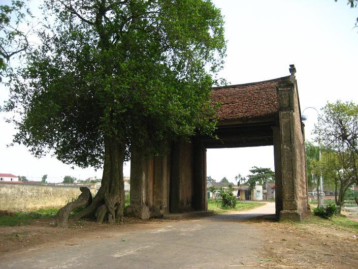 越南乡村及其面貌的构成因素 hinh 1