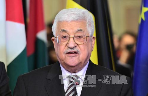 巴勒斯坦总统阿巴斯开始访问埃及 hinh 0