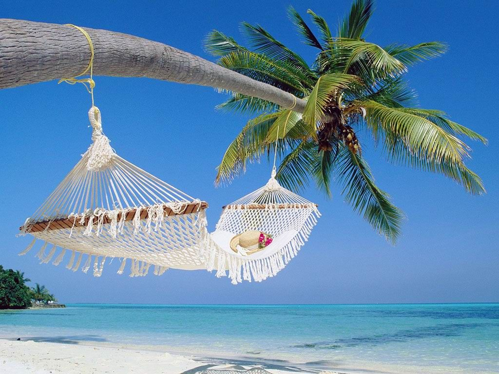 «жемчужныи остров» фукуок – идеальное место для летнего отдыха hinh 0