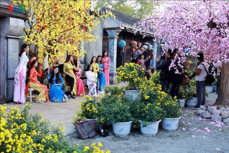 hanoians visit flower villages as tet holiday nears hinh 5