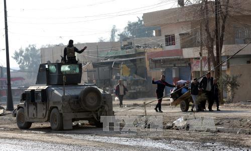 иракские силы продолжают наступление в мосуле hinh 0