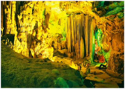World Natural Heritage Phong Nha – Ke Bang preserved
