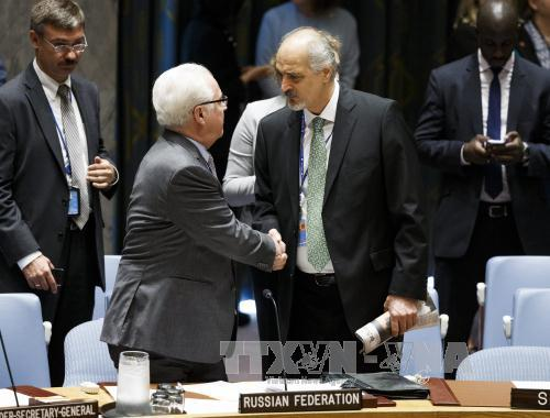 UN Security Council convenes Syria meeting