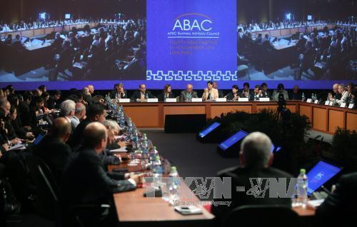 2016 APEC Economic Leaders' Week kicks off in Peru