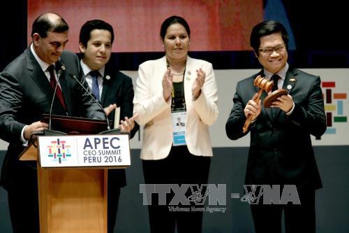 APEC members support APEC Year 2017 in Vietnam