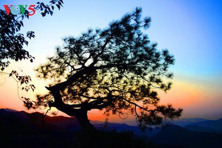 yen tu – morgendammerung an einem bedeutenden ort des buddhismus hinh 17
