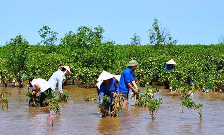 Vietnam's adaptation to climate change Current Affairs