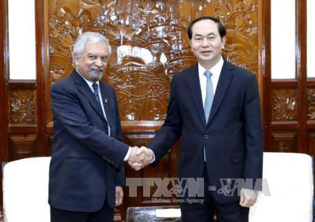 陈大光会见联合国常驻越南协调员兼联合国开发计划署驻越首席代表 hinh 0