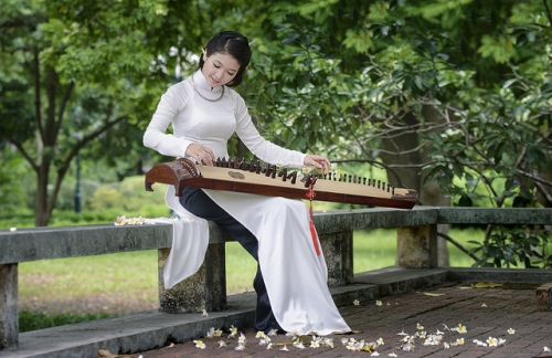 the 16-string zither - traditional vietnamese musical instrument hinh 2