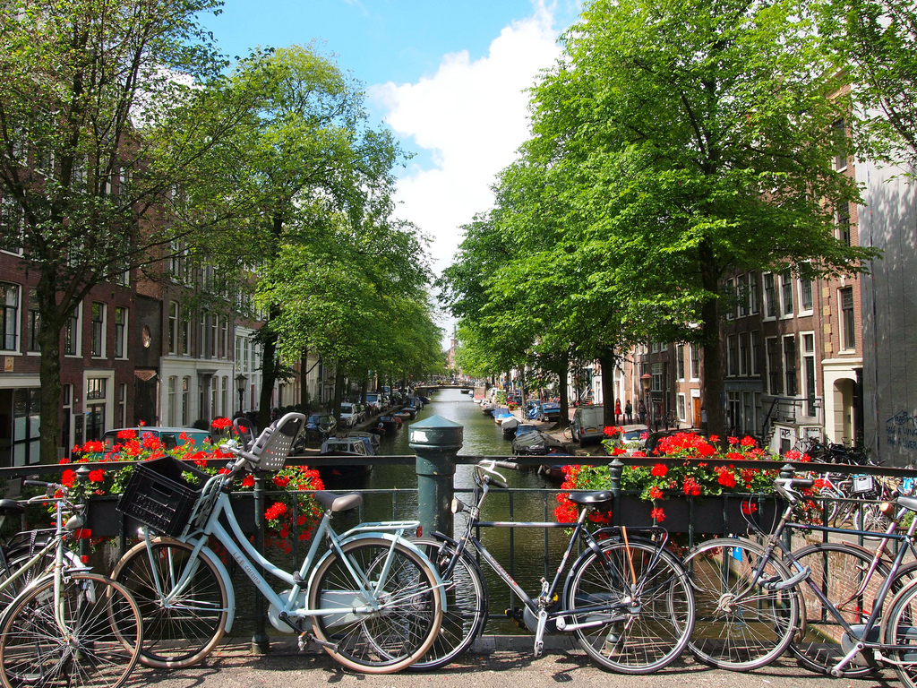 the netherlands – the bicycle heaven of the world hinh 2