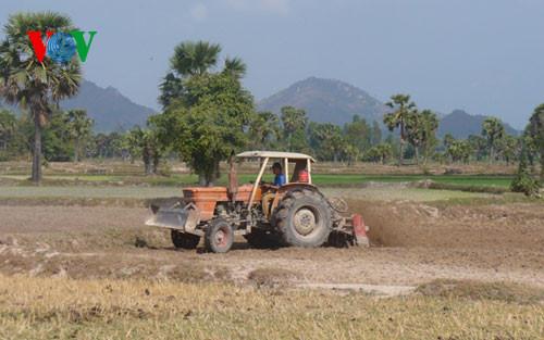 Mekong Delta economic zone seeks socioeconomic development