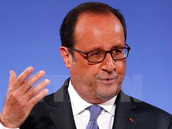 президент франции франсуа олланд начал официальныи визит во вьетнам hinh 0