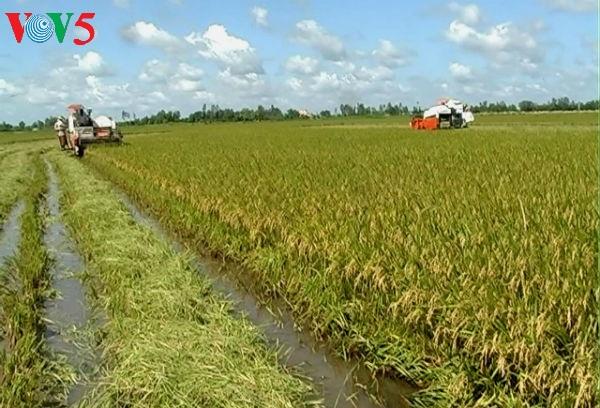развитие сельского хозяиства в дельте реки меконг на фоне международнои интеграции страны hinh 2