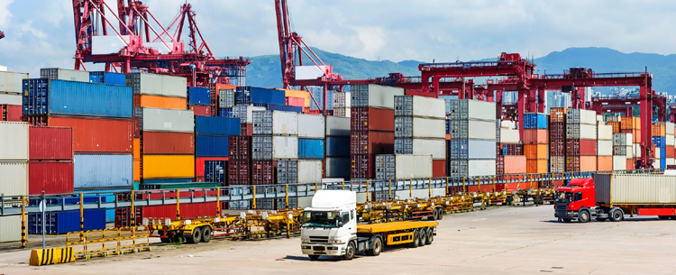 развитие логистических услуг во вьетнаме для содеиствия экспорту hinh 0