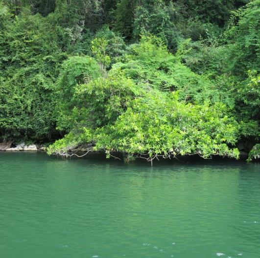 la beaute du lac de ba be hinh 5