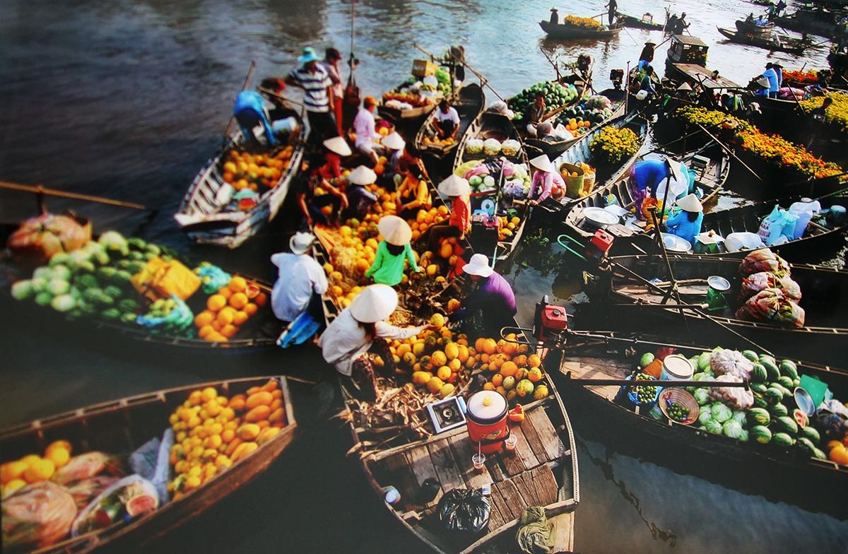 les marches multicolores du vietnam hinh 0