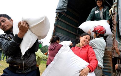 предоставлены две тыс. тонн риса жителям в затоленных раионах в биньдинь hinh 0