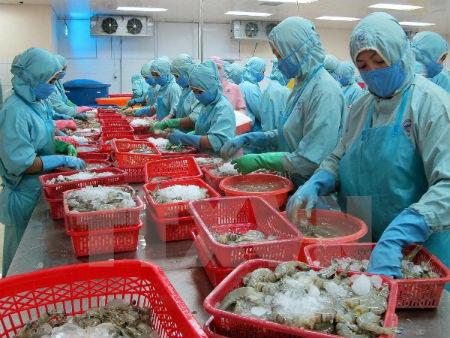 越南水产业面向提高虾出口额的目标 hinh 0