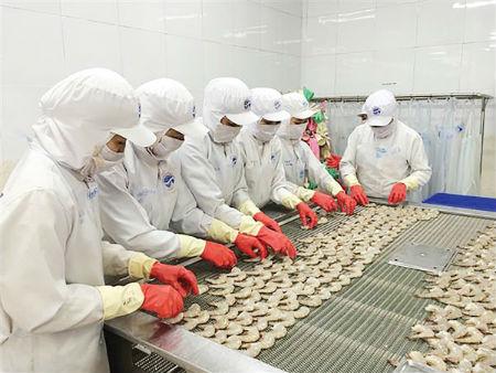 越南水产业面向提高虾出口额的目标 hinh 1